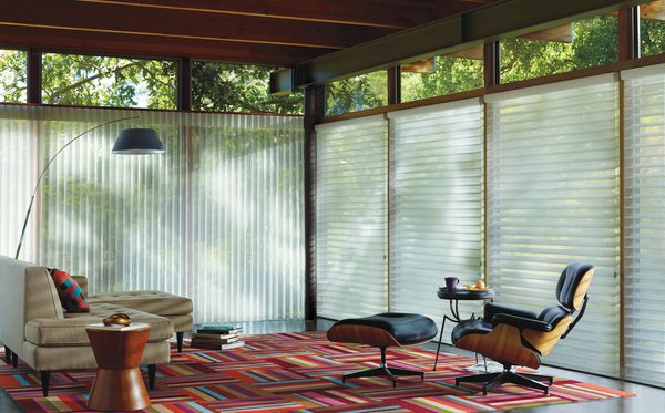 Silhouette™ Window Shadings & Luminette® Privacy Sheers in Den