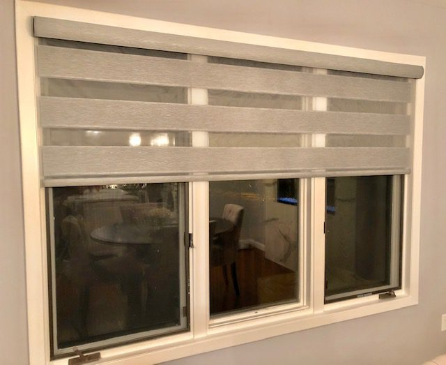 Alta Window Fashions Dual Shades